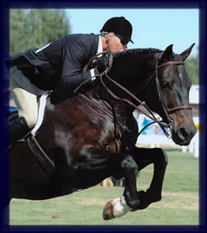 Welcome to The Chase - English Horse Riding Instruction and